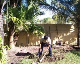 Landscape Design in Coconut Grove