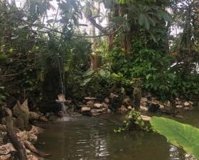 Custom Waterfalls by Landscape Designer