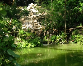 Custom Ponds