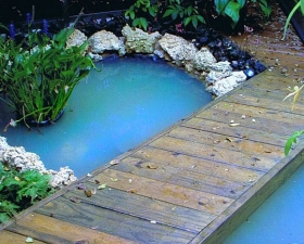 Water Feature Design in Key Biscayne