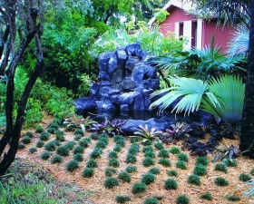 Water Feature Design in Coconut Grove