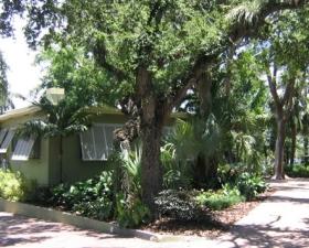 Tropical Landscape Design in Miami and Miami Gardens
