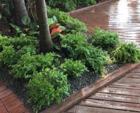 Landscaping Design in Miami Beach
