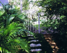 Landscape Installation in Coral Gables Walkway 2