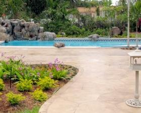 Backyard Landscape Design in Miami