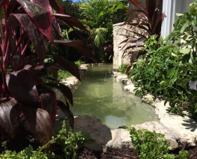 Water Feature Design with Tropical Landscape Design 1