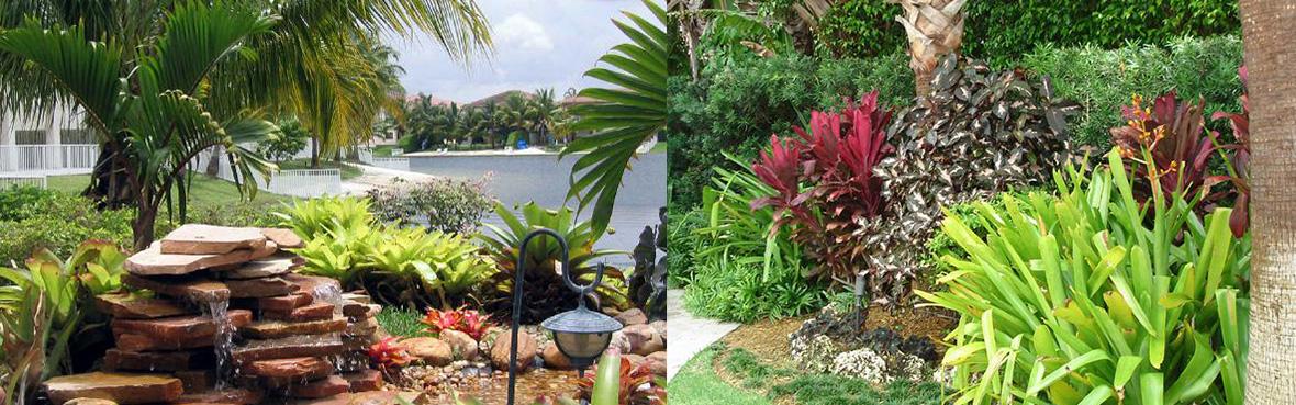 Landscape Design and Landscaping Design in Coral Gables, Miami, Miami Beach