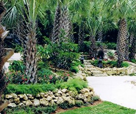 Landscaping Design, Waterfall Design, Coral Gables, Miami Beach