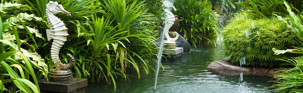 Exotic Landscape Design and Landscaping Design in Coconut Grove, Coral  Gables, Cutler Bay, Kendall, Key Biscayne, Miami, Miami Beach, Palmetto  Bay, ... - Exotic Landscape And Landscaping Design In Kendall, FL