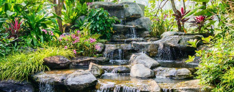 Backyard Landscape Design in Key Biscayne, Coral Gables, Miami