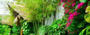 Landscape Installation in Key Biscayne, Pinecrest, Kendall